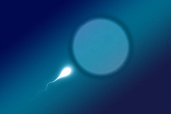 male-factor-infertility-san-diego.png
