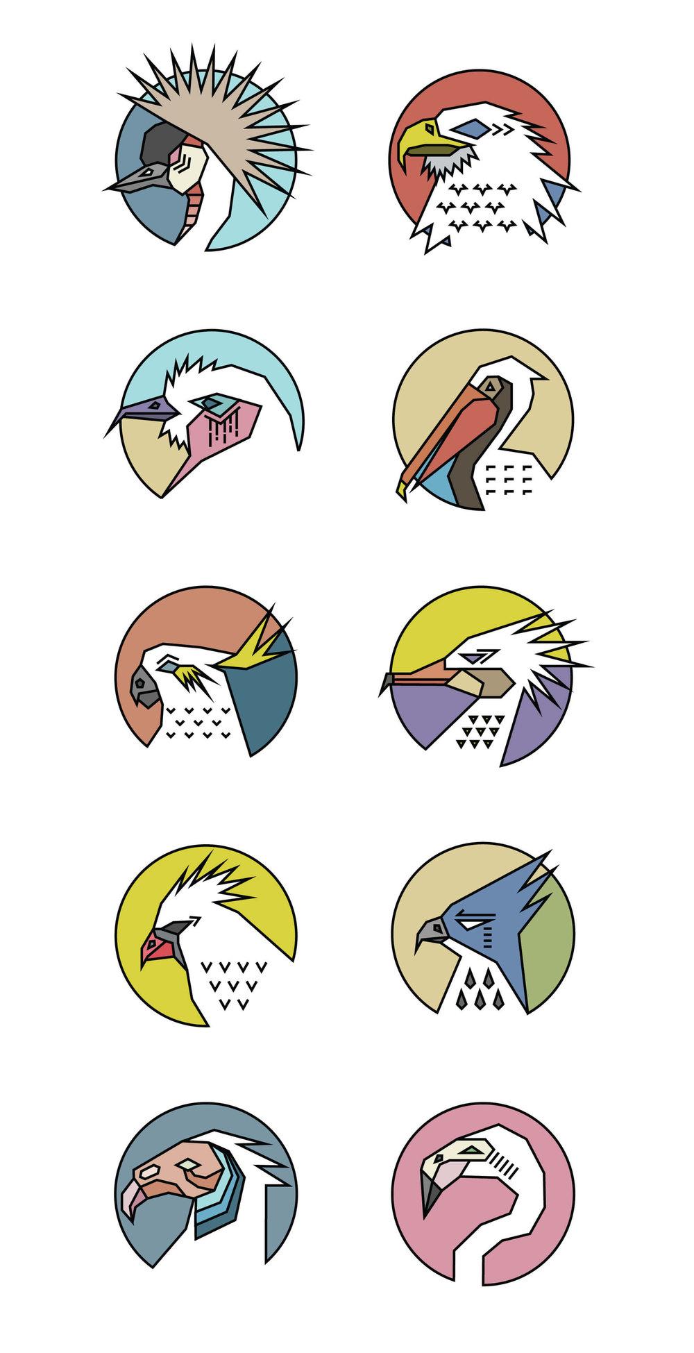 Birds-for-Book.jpg