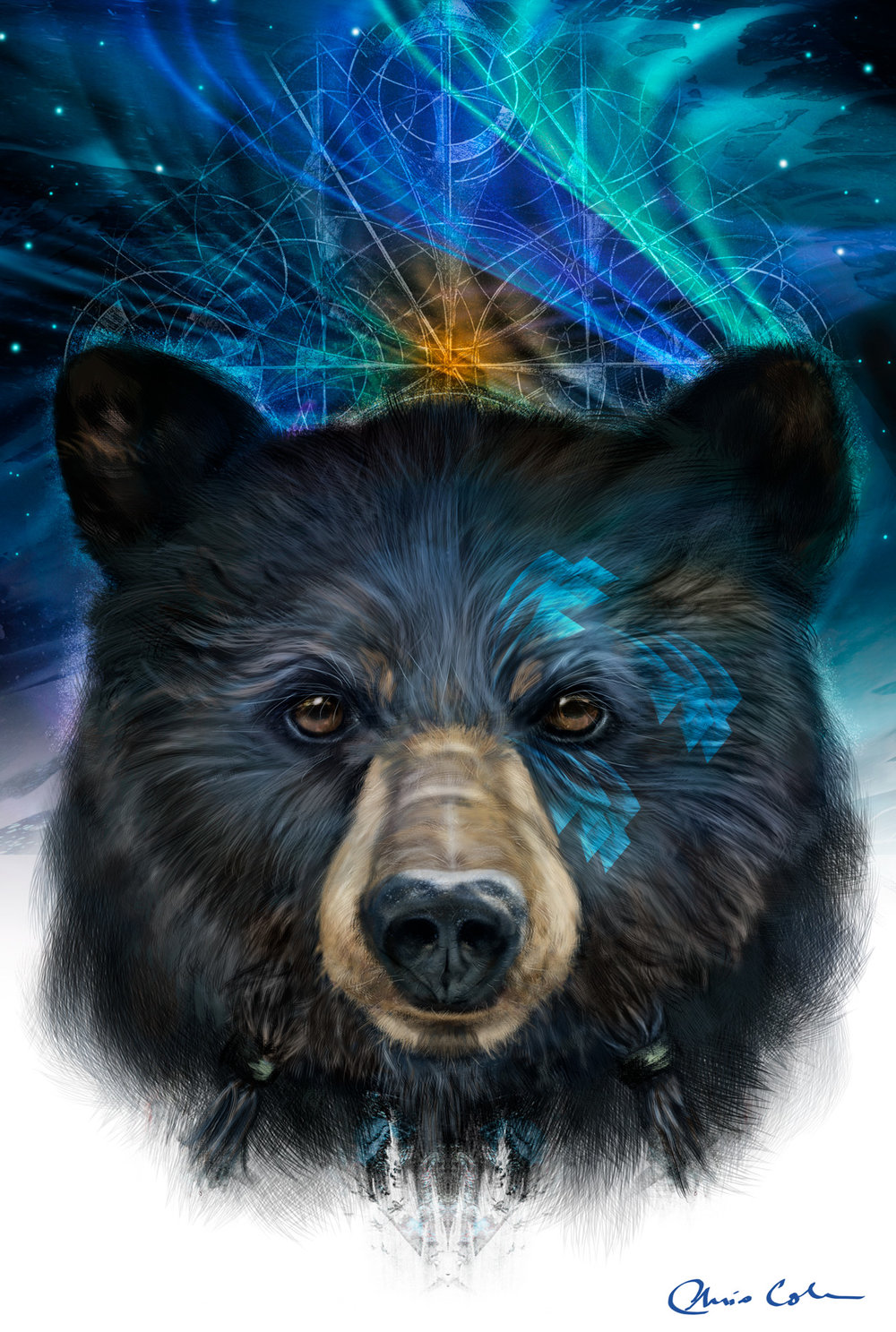 Bear-Medicine-for-web.jpg