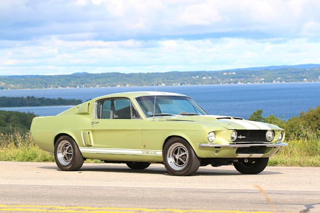 A Lime Gold 1967 Shelby G T  500 Personalized by Carroll