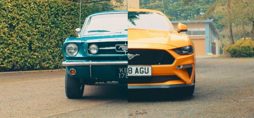 2018-1964-ford-mustangs.jpeg