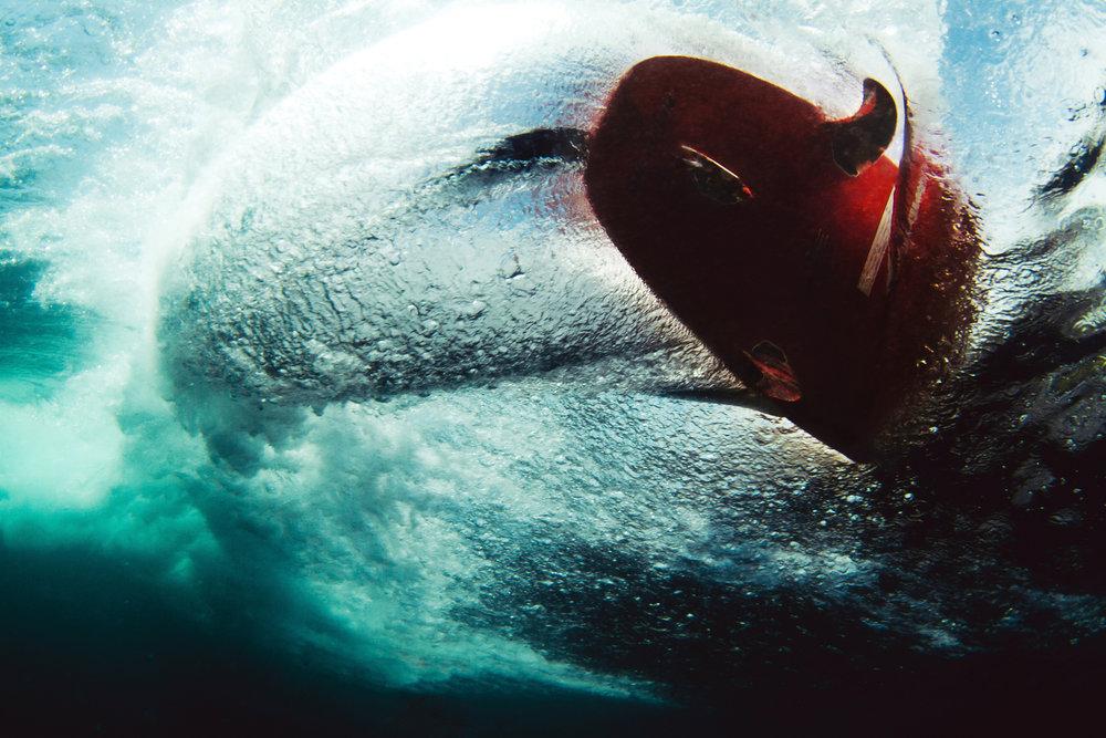 underwater_38.jpg