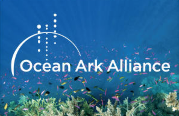 Ocean Ark Alliance - Ocean Ark Alliance. OAA's mission is to nurture, inspire and create a deeper appreciation of some of the most wondrous, yet fragile, ecosystems on our planet through educational outreach. Our current focus is coral reefs and shark conservation.