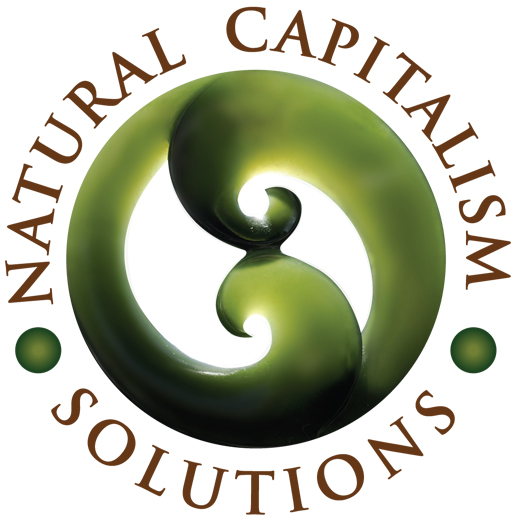 Natural Capitalism Solutions - Natural Capitalism Solutions is recognized internationally for its work in the field of sustainability. Formed by Hunter Lovins, co-author of the acclaimed book Natural Capitalism: Creating the Next Industrial Revolution, Natural Capitalism Solutions is led by Lovins, who has over 40 years experience in business, sustainability, and change management. https://natcapsolutions.org/