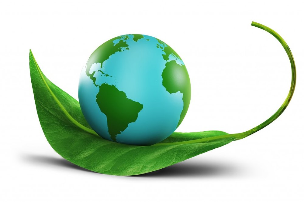 Environmental Scientists and Specialists -