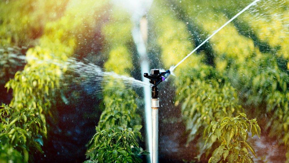 Sistema de irrigação em funcionamento na região de Baixo Acaraú e Tabuleiro das Russas (CE).