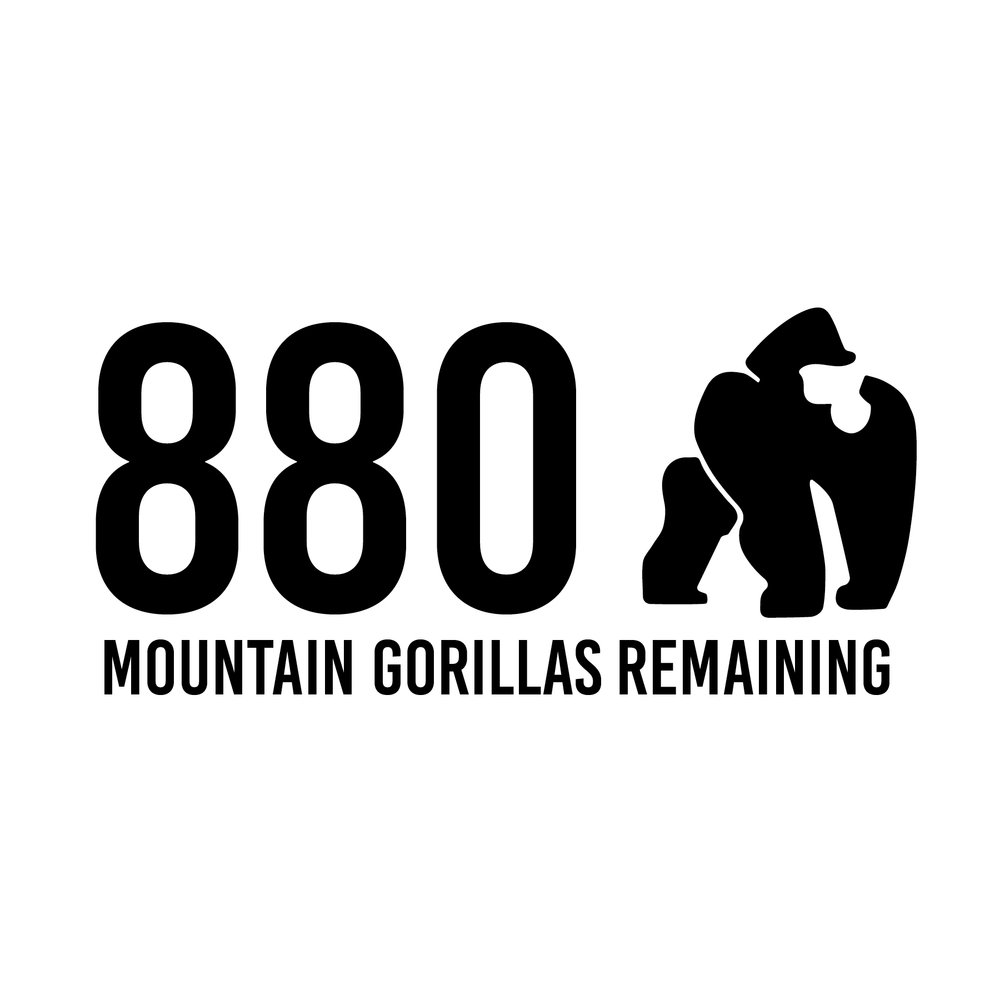 880Gorillas.jpg