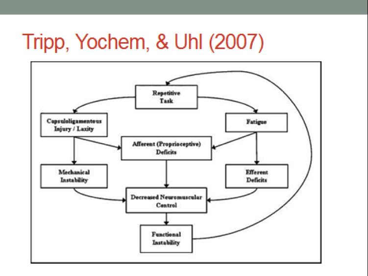 Tripp_Yochem_Uhl-2007.png
