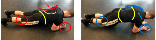 The front plank.PNG