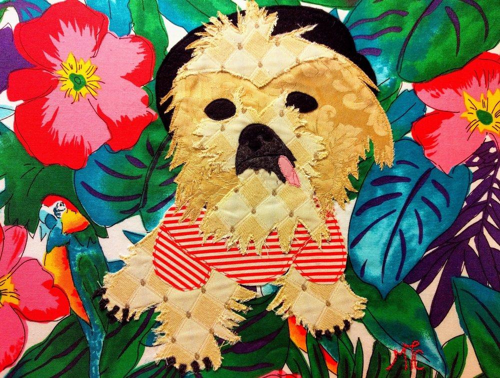 Petey Pup - 2017