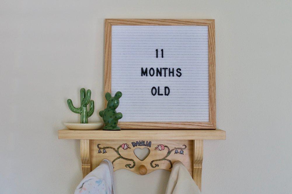 Nursery Shelf 1.jpg