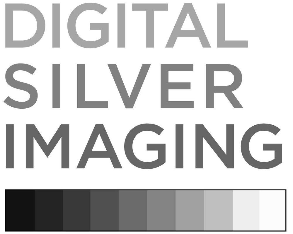 Digital Silver Imaging.jpg