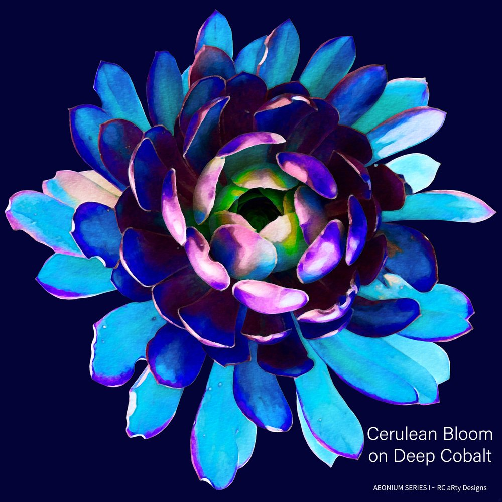Cerulean Bloom on Dark Cobalt - text inc..jpg