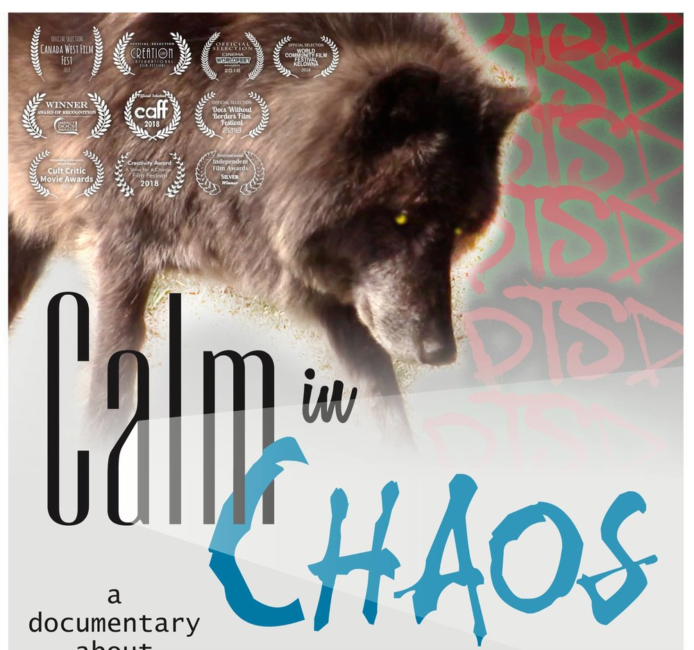 Calm IN Chaos.jpg