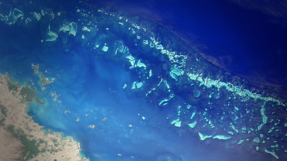 Photo 5 Screen-Shot-Reef_from_Above.jpg