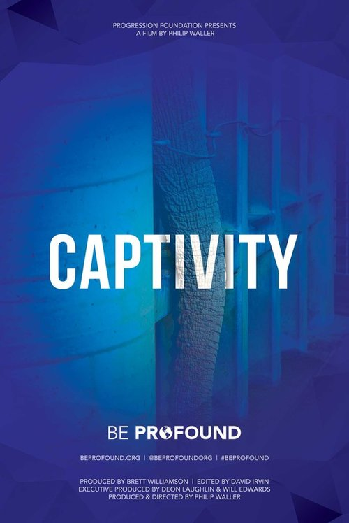 Captivity Poster.jpg