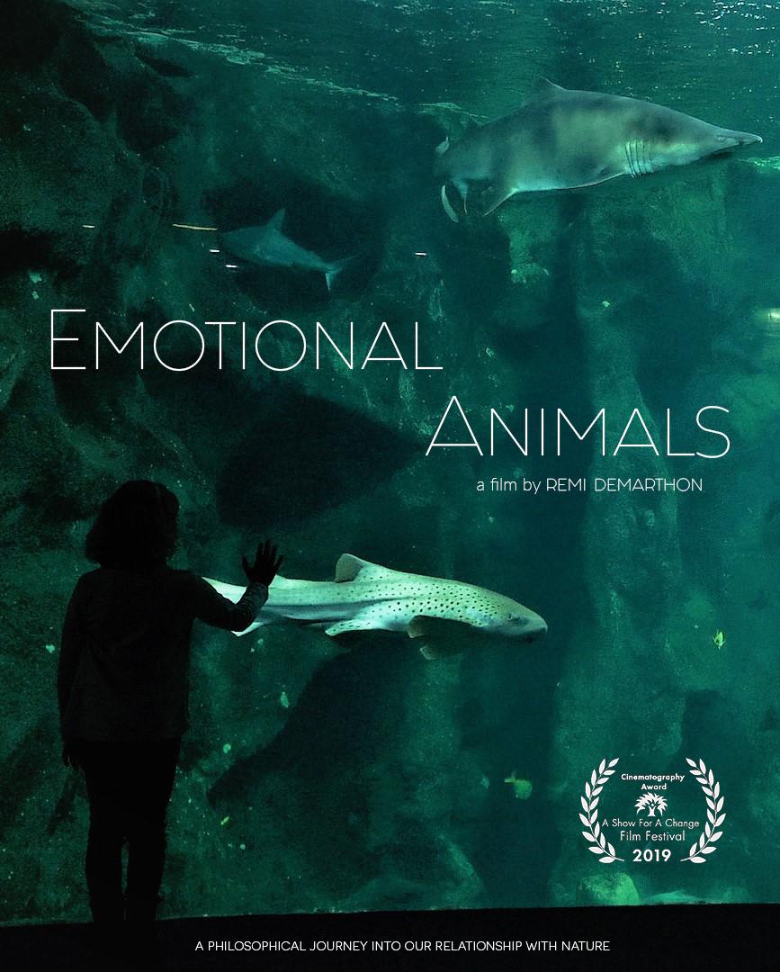 Affiche emotional animals award.png