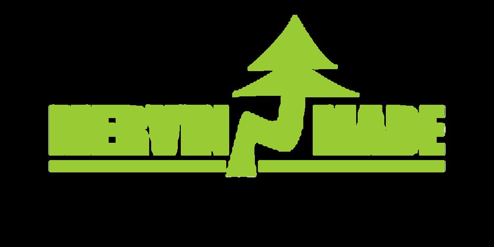 mervin-logo.png