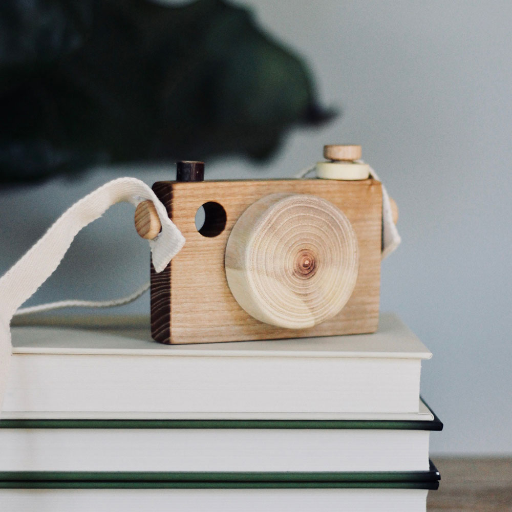woodCamera.jpg