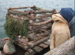 fish crib pic.jpg