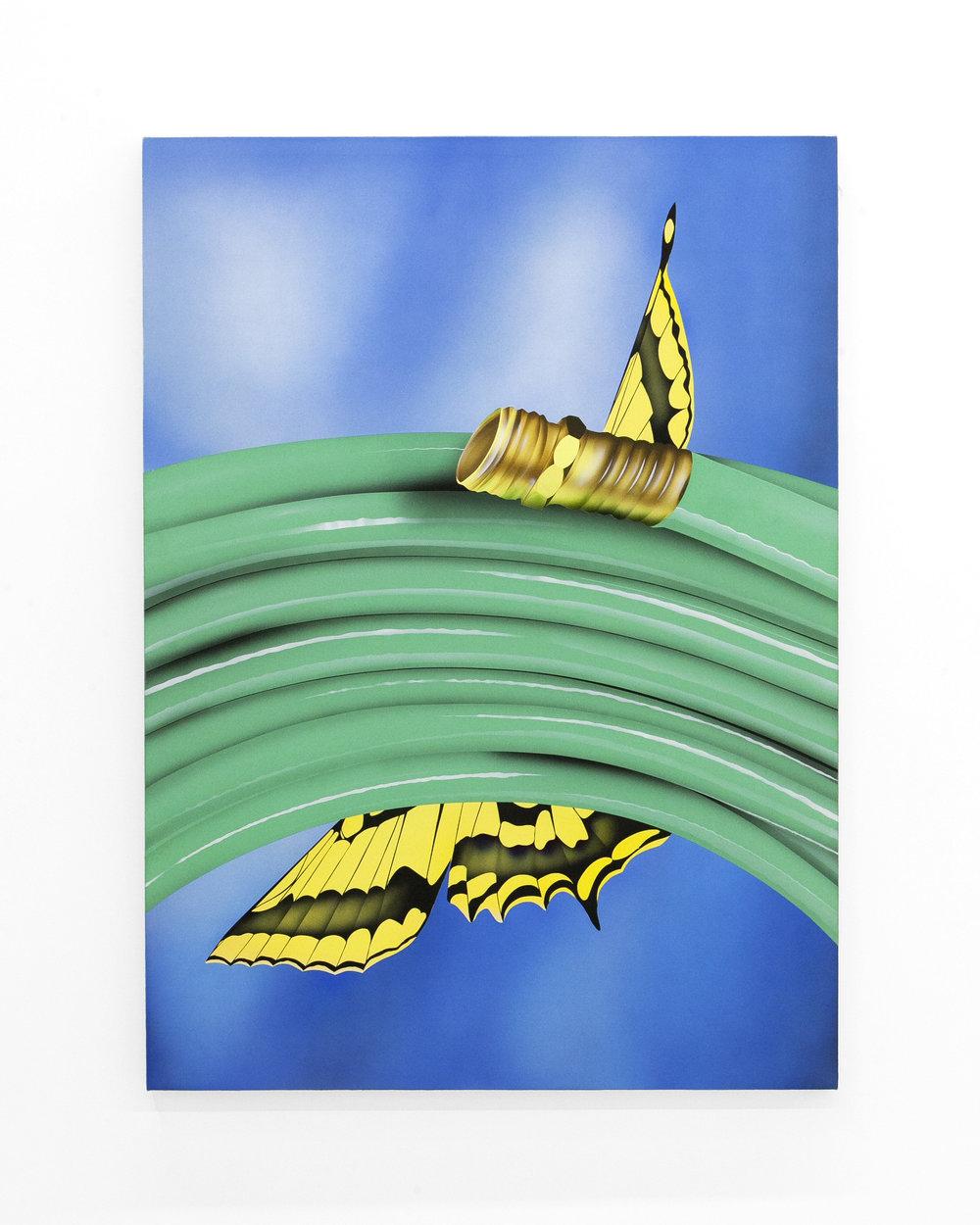 aej_butterflyhose_canvas.jpg