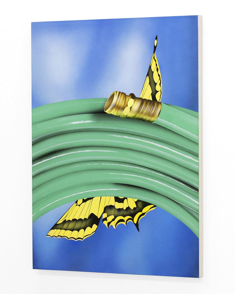 aej_butterflyhose_canvas_4.jpg