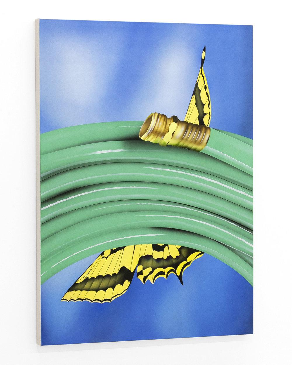 aej_butterflyhose_canvas_3.jpg
