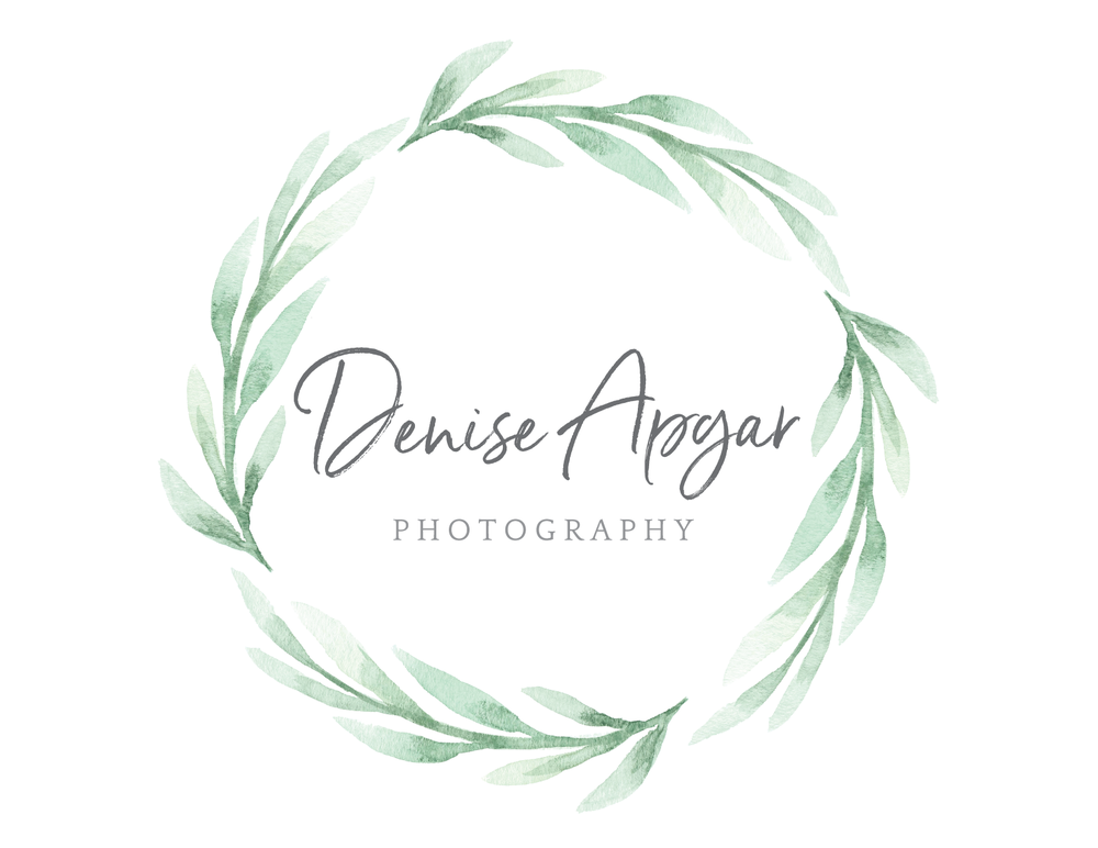 Denise Apgar Photo Logo_Web-01.png