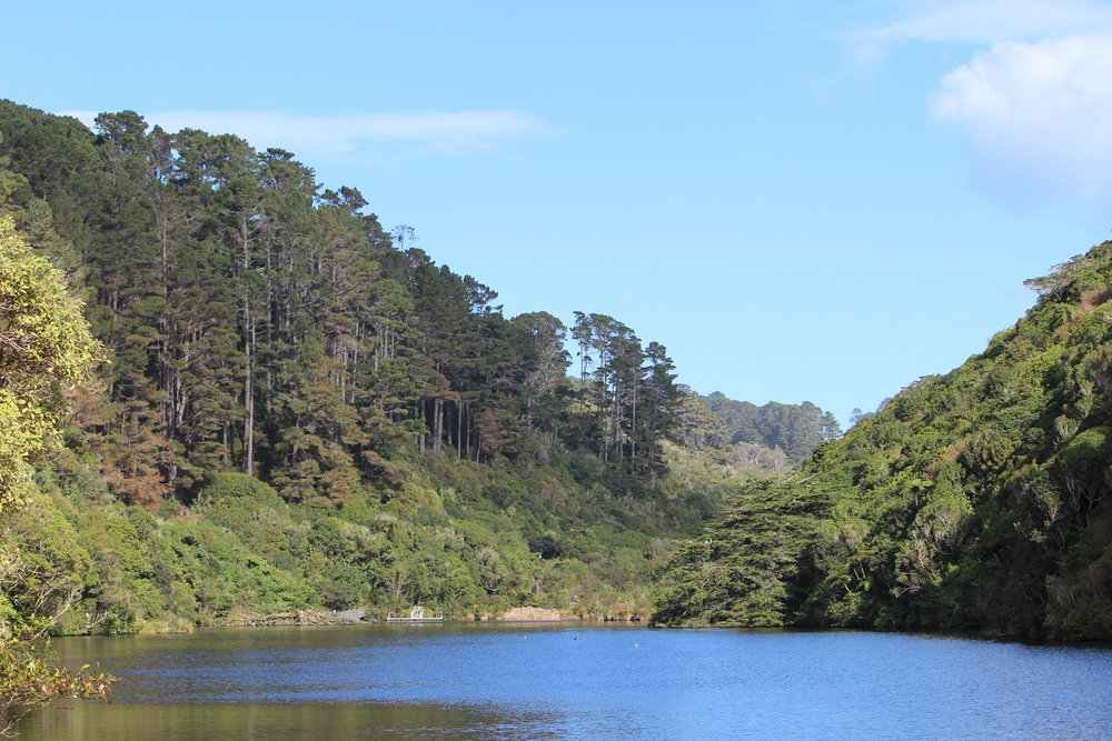 Zealandia Wellington | EmmaLouisa.com