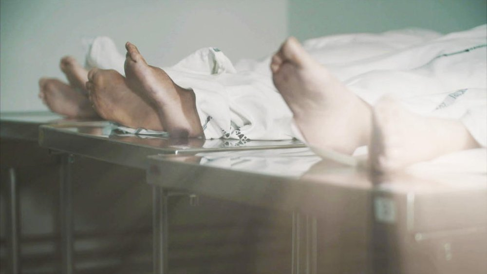 MÆND DER DRÆBER KVINDER (2015)  DR2