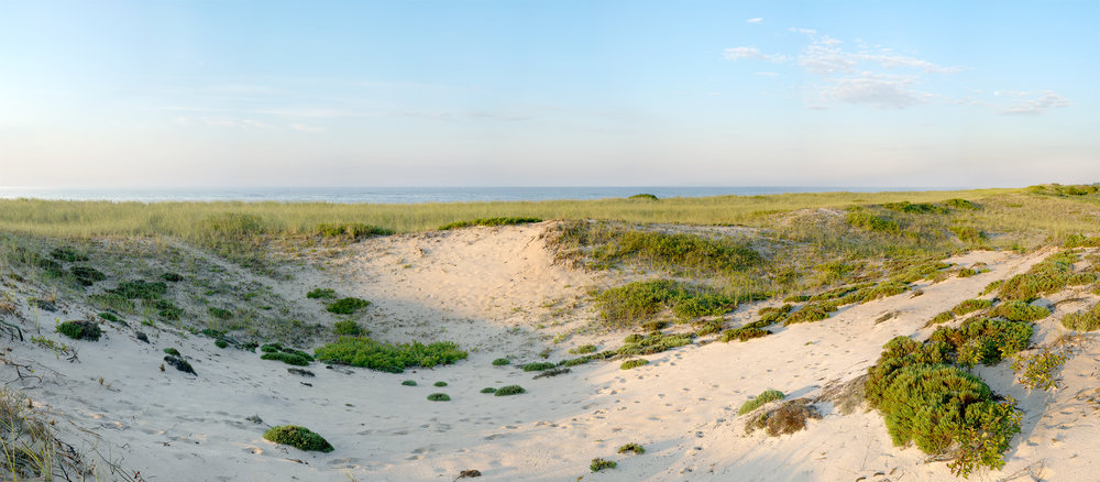 Atlantic Double Dunes