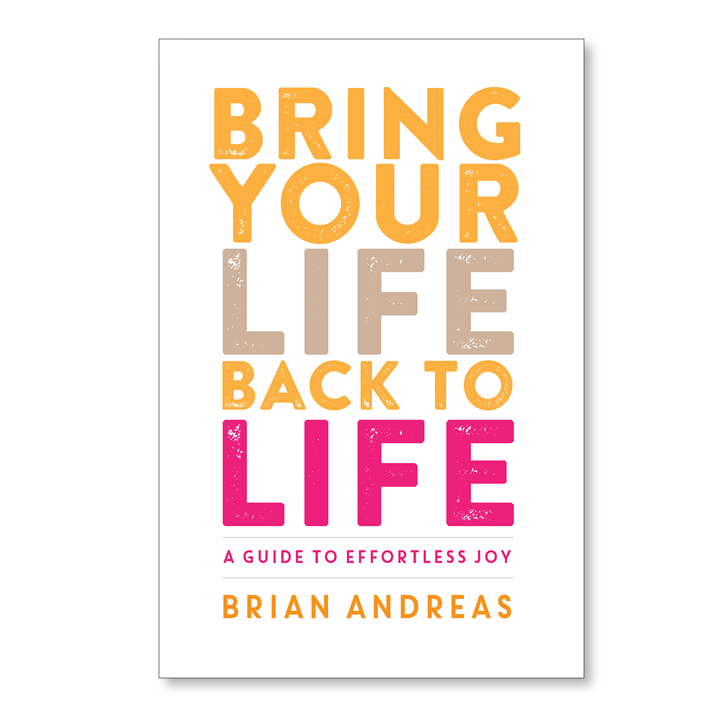 Bring Your Life Back to Life A clear-sighted new book from Brian Andreas about choosing a life that truly lights you up & beginning to walk towards that. Every. Single. Day.