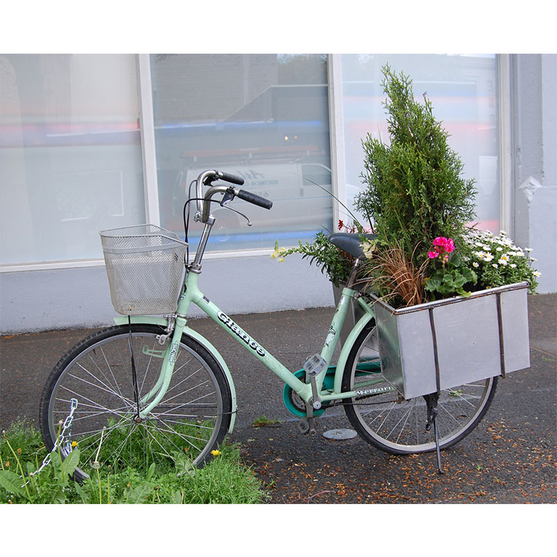 Gardens on the Move - Sculpture , 2009 bicycle, shrubs, flowers dimensions variable Edition of 3, 1AP  Inquire >