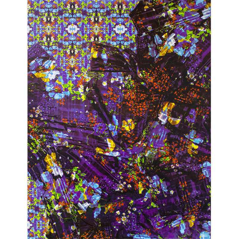 """Petals Undone , 2015 screenprint on aluminum panel 30 x 23""""  Inquire >"""