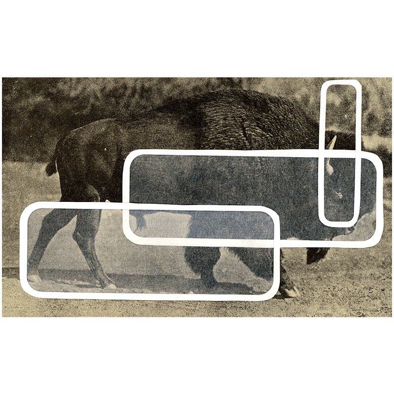 """Overlay Series: Buffalo , 2005 digital print 24 x 39"""" paper Edition of 3, TP  Inquire >"""