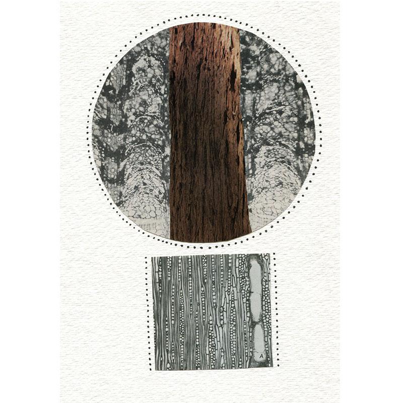 """Under My Skin 8 , 2015 collage 11 x 9"""" framed  Inquire >"""