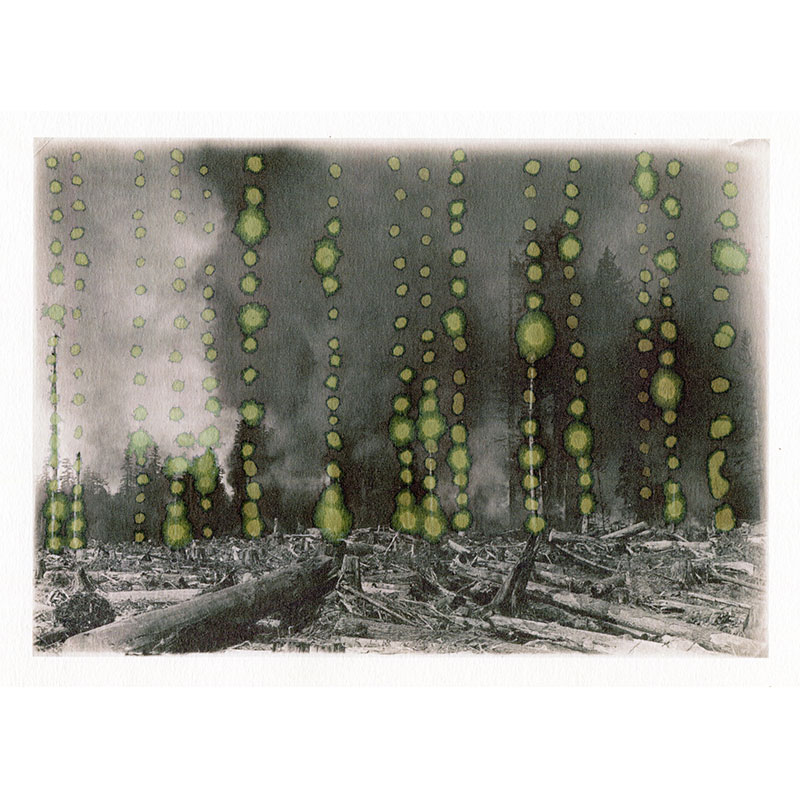 """Unveiling 5 , 2015 water on inkjet print 11.25 x 8"""" paper  Inquire >"""