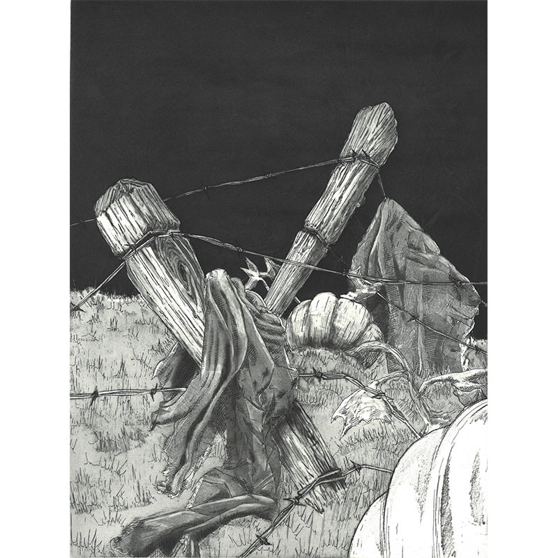 """Rags , 2010 etching 11.75 x 8.75"""" image 17 x 13"""" paper Edition of 10  Inquire >"""