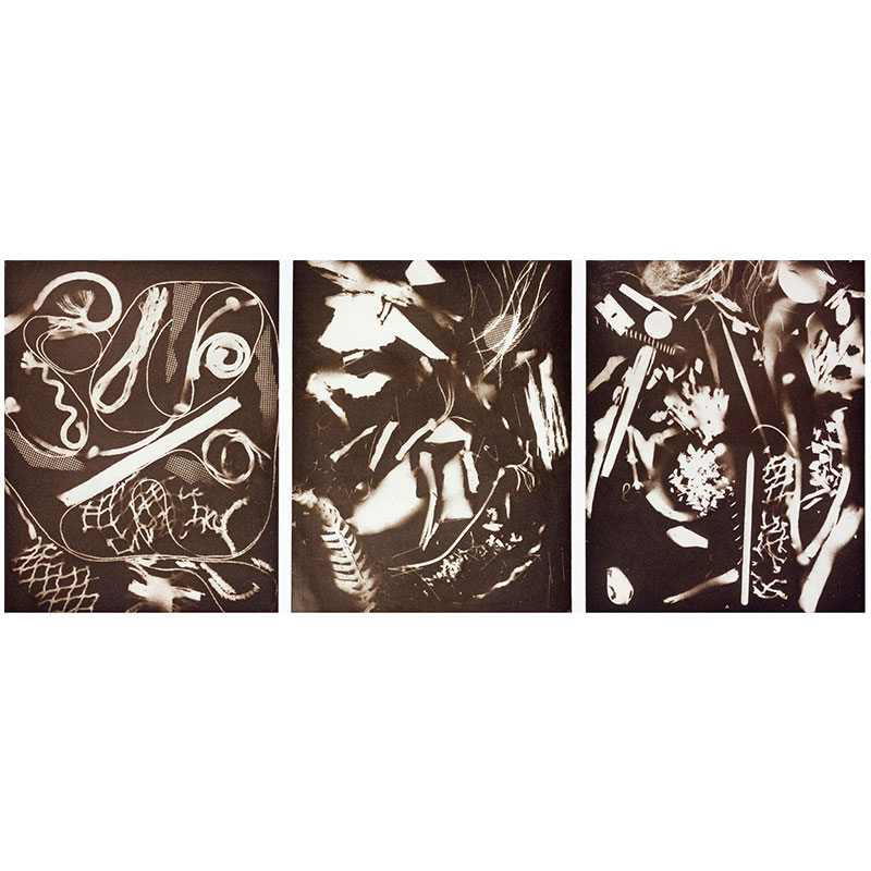 """The Things of Life (To See or Not To See) , 2013 aquatint 14 x 34"""" image 19.5 x 39"""" paper Edition of 30  Inquire >"""