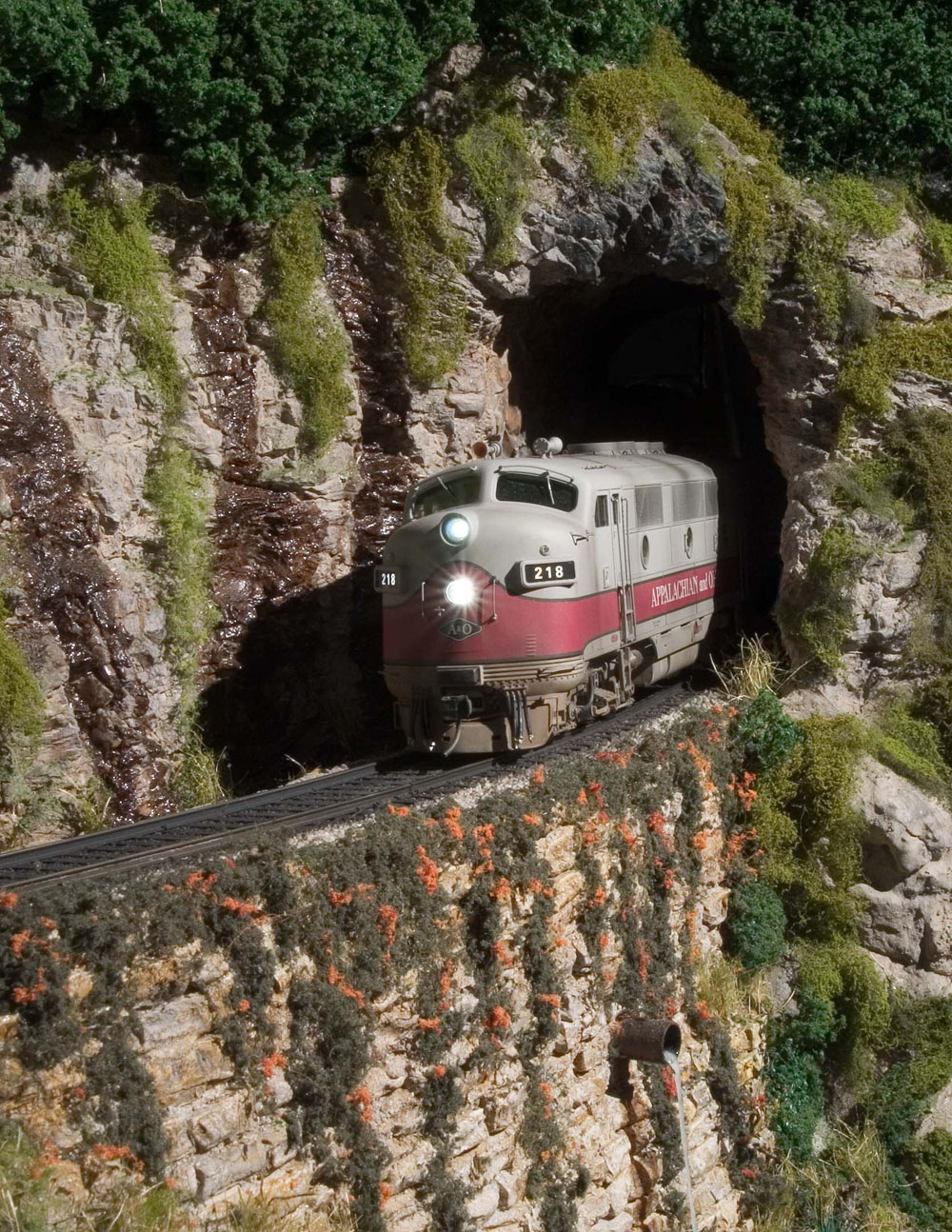 Bob Sobol's beautifully detailed P&D Hobbies F3 #218 exits Speedy Tunnel at milepost 234.