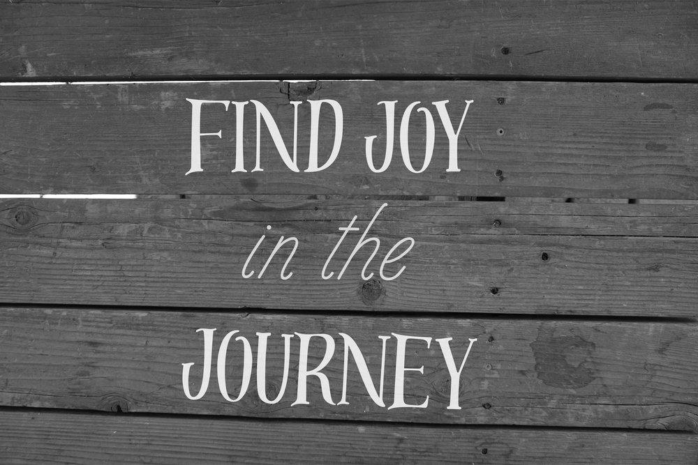 Find Joy.jpg