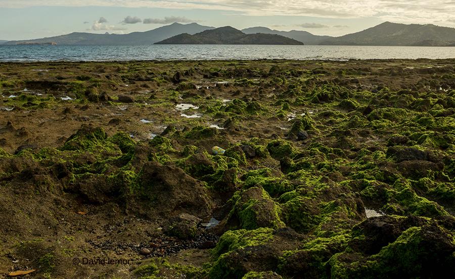 Plage du Faré  - Dzaoudzi - Petite Terre / Vue sur l' îlot Mbouzi