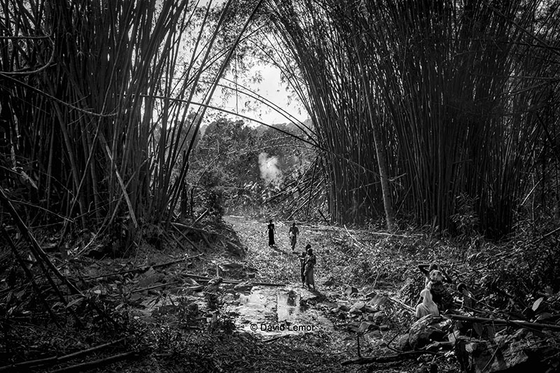 david lemor-Tzoundzou 01-Mayotte.jpg
