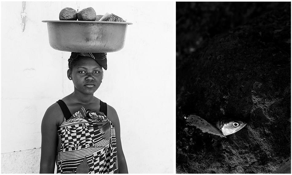 David Lemor-Majunga dyptique-Madagasca.jpg