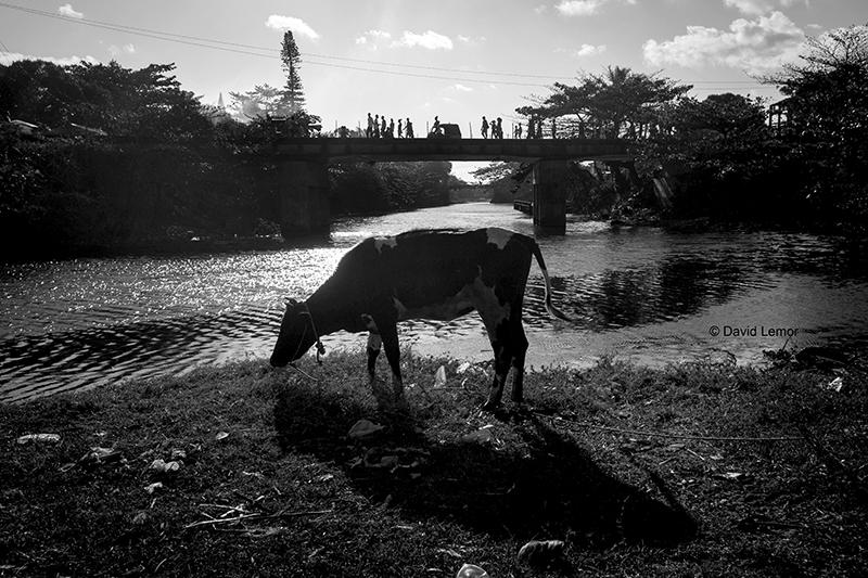 David Lemor-Tamatave 04-Madagascar.jpg