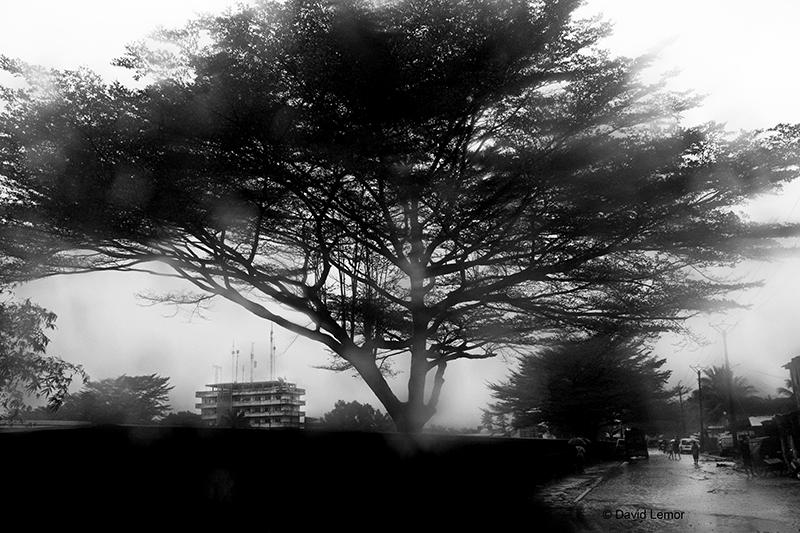 David Lemor-Tamatave 24-Madagascar.jpg
