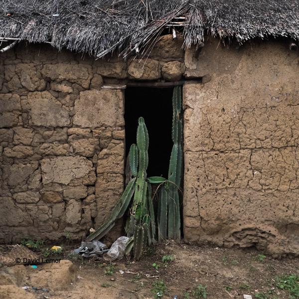 David Lemor - Ranohira 4-Madagascar.jpg
