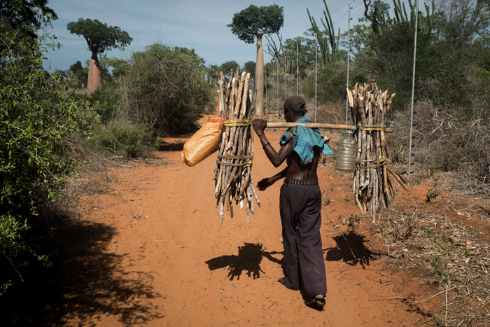 David Lemor-Manguili 04-Madagascar.jpg