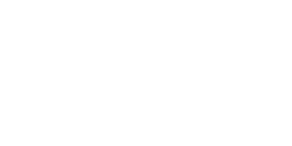 Styled Space Logo_White.png