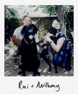 Rui + Anthony's garden -